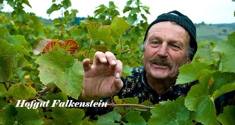 Hofgut Falkenstein